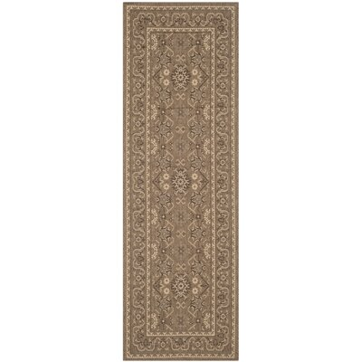 Bacall Brown / Creme Indoor / Outdoor Area Rug Rug Size: Runner 27 x 82