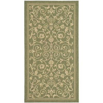 Bexton Olive Outdoor Area Rug Rug Size: Runner 23 x 12