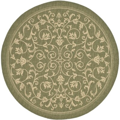Bexton Olive Outdoor Area Rug Rug Size: Round 67