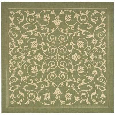 Bexton Olive Outdoor Area Rug Rug Size: Square 67