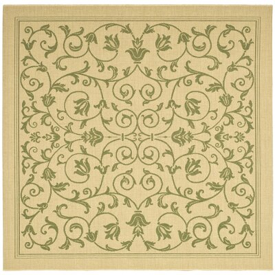 Bexton White Ivory / Green Outdoor Area Rug Rug Size: Square 6'7