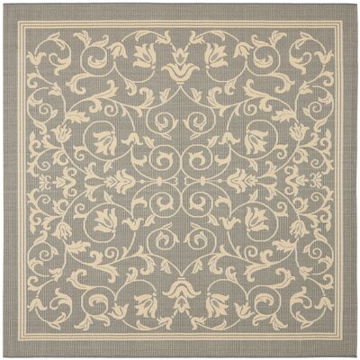 Bexton Natural/Gray Outdoor Area Rug Rug Size: Square 710