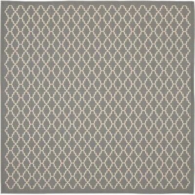 Bexton Anthracite/Beige Indoor/Outdoor Rug Rug Size: Square 4