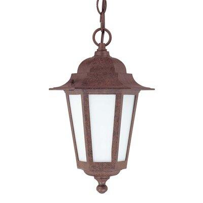 Mayer 1-Light Outdoor Hanging Lantern