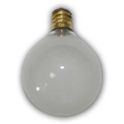 Thomas Incandescent Light Bulb (Pack of 12) Color: Frosted