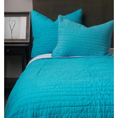 Hessville Cotton Quilt Size: King, Color: Teal