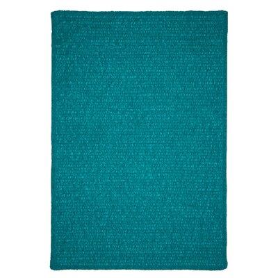 Redfield Hand-Woven Teal Indoor/Outdoor Area Rug Rug Size: 5 x 8