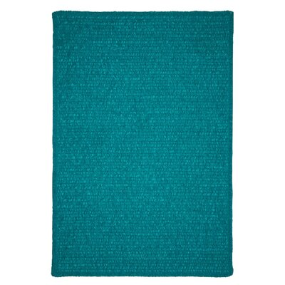Redfield Hand-Woven Teal Indoor/Outdoor Area Rug Rug Size: 8 x 11