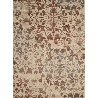 Greenhalge Area Rug Rug Size: Rectangle 53 x 76