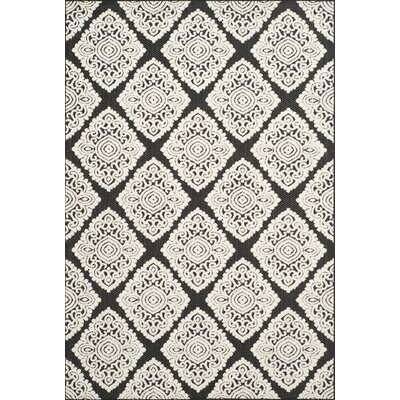 Mannox Anthracite/Cream Indoor/Outdoor Area Rug