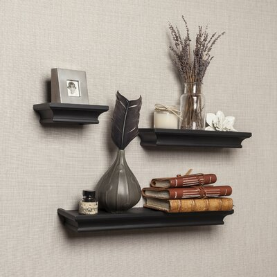 3 Piece Ledge Floating Shelf Set Finish: Black