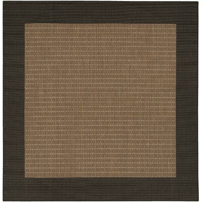 Owen Checkered Field Cocoa/Black Indoor/Outdoor Area Rug Rug Size: Square 86
