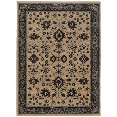 Douglassville Beige Area Rug Rug Size: Rectangle 52 x 76