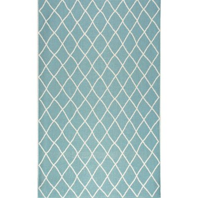 Kassik Turquoise Indoor/Outdoor Area Rug Rug Size: 53 x 76