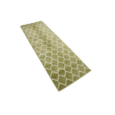 Emjay Light Green Area Rug Rug Size: Runner 27 x 165
