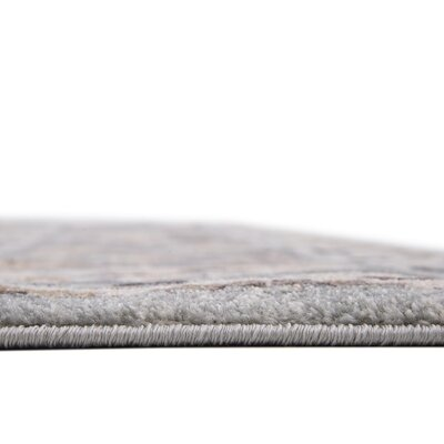 Mariel Silver Area Rug Rug Size: Rectangle 8 x 10