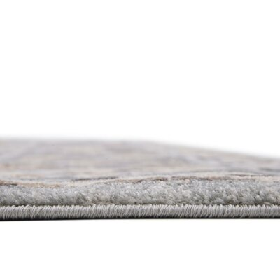 Mariel Silver Area Rug Rug Size: 8 x 10