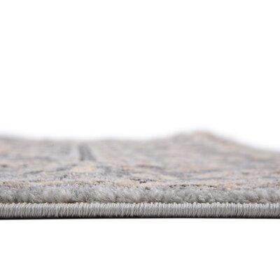 Mariel Silver Area Rug Rug Size: 4 x 6