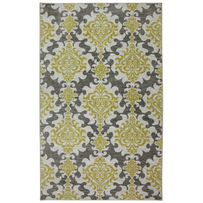 Fraserburgh Gray / Canary Area Rug