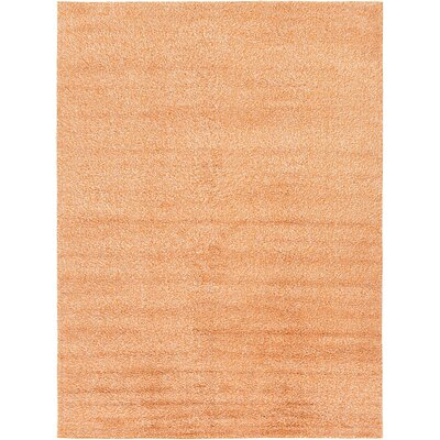 Sellman Peach Area Rug Rug Size: Runner 3'3 x 9'10