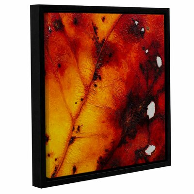 Axioma II Framed Painting Print Size: 10