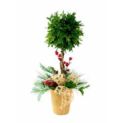Tea Leaf  Single Ball Topiary