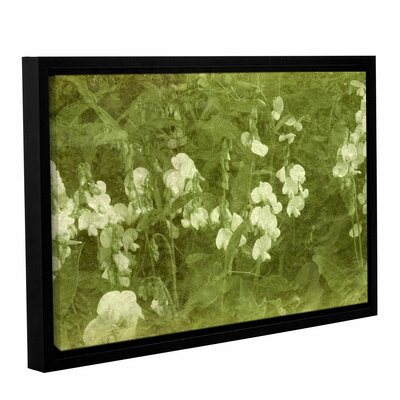 Sweet Peas Framed Graphic Art on Wrapped Canvas
