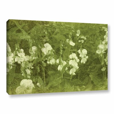Sweet Peas Graphic Art on Wrapped Canvas