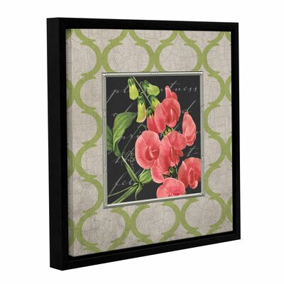 Sweat Pea Framed Graphic Art on Wrapped Canvas