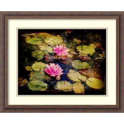 Lily Ponds I Framed Photographic Print