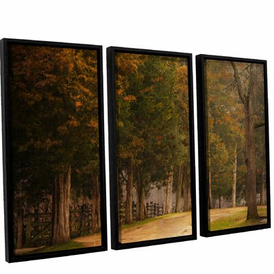 A Road Less Traveled 3 Piece Framed Painting Print on Canvas Set Size: 24
