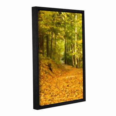 Forest Path Framed Painting Print on Wrapped Canvas