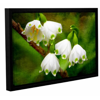 Spring Reunion Framed Photographic Print on Wrapped Canvas