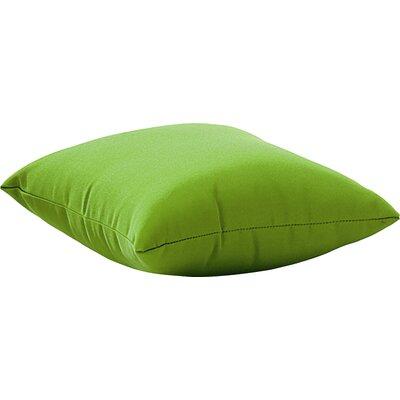 Marietta Outdoor Throw Pillow Size: Small, Color: Green