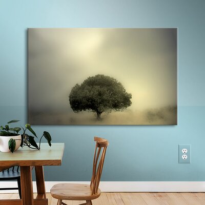 Room to Grow Photographic Print on Canvas
