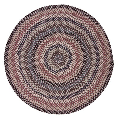 Lettie Purple Area Rug Rug Size: Round 10