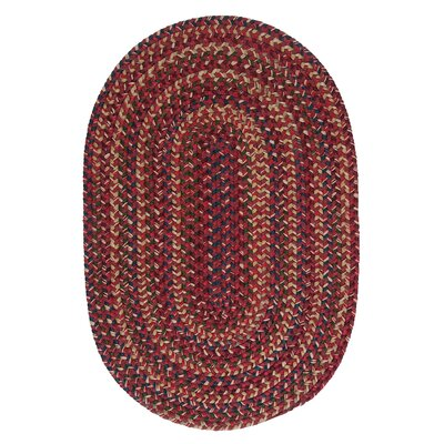 Mclaughlin Burnt Brick Area Rug Rug Size: Oval 7 x 9