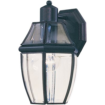 Stroble 1-Light Outdoor Wall Lantern Finish: Black
