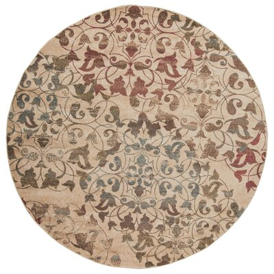 Greenhalge Area Rug Rug Size: Round 8