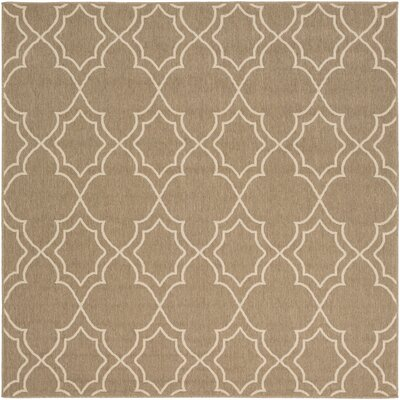 Amato Beige Indoor/Outdoor Area Rug Rug Size: Rectangle 73 x 73