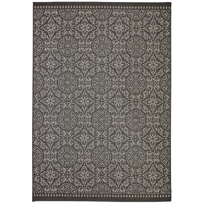 Barker Drak Brown Indoor/Outdoor Area Rug Rug Size: Rectangle 53 x 76