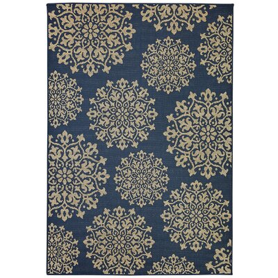 Barker Navy Indoor/Outdoor Area Rug Rug Size: Rectangle 10'6