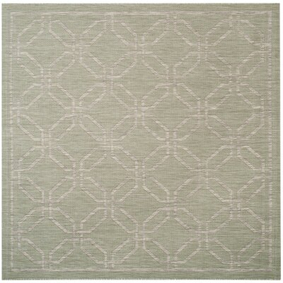 Bexton Green/Gray Area Rug Rug Size: Square 67