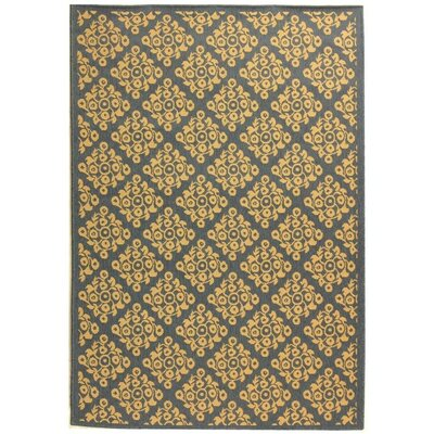 Bexton Blue/Natural Indoor/Outdoor Area Rug
