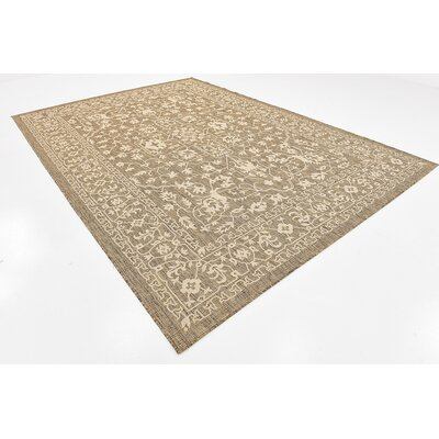 Kivett Brown Outdoor Area Rug Rug Size: Rectangle 8 x 114