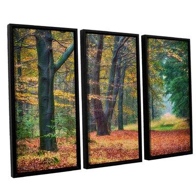 Autumn Light 3 Piece Framed Photographic Print Set
