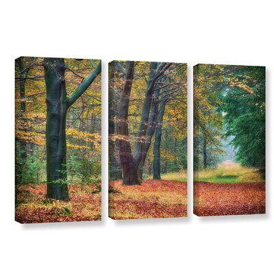 Autumn Light 3 Piece Graphic Art on Wrapped Canvas Set