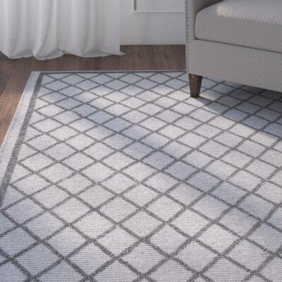Flatwoven Gray Indoor/Outdoor Area Rug Rug Size: 5 x 8