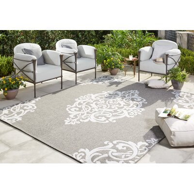 Barker Silver Indoor/Outdoor Area Rug Rug Size: 53 x 76