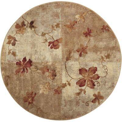 Dundridge Hand-Woven Brown/Red Area Rug Rug Size: Round 56